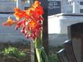 Cruce mare ortodox granit negru