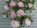 Trandafir roz buchet mic 2