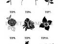 Tip Floare gravat 1 - 10