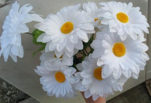 Margarete albe