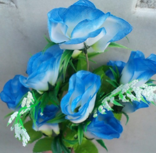 Trandafir albastru cu alb buchet mare